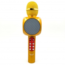 Bluetooth microphone-Karaoke + LED music Яркий