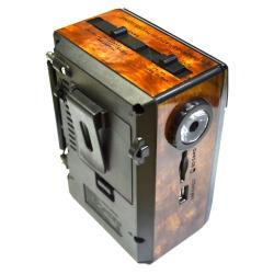FM-приемник GOLON RX-078